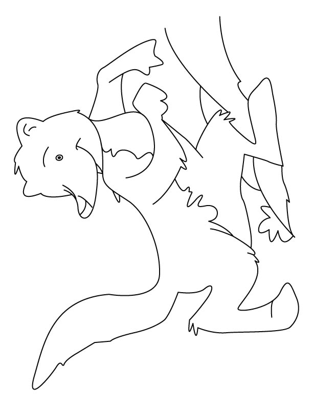 Giggling mongoose coloring pages