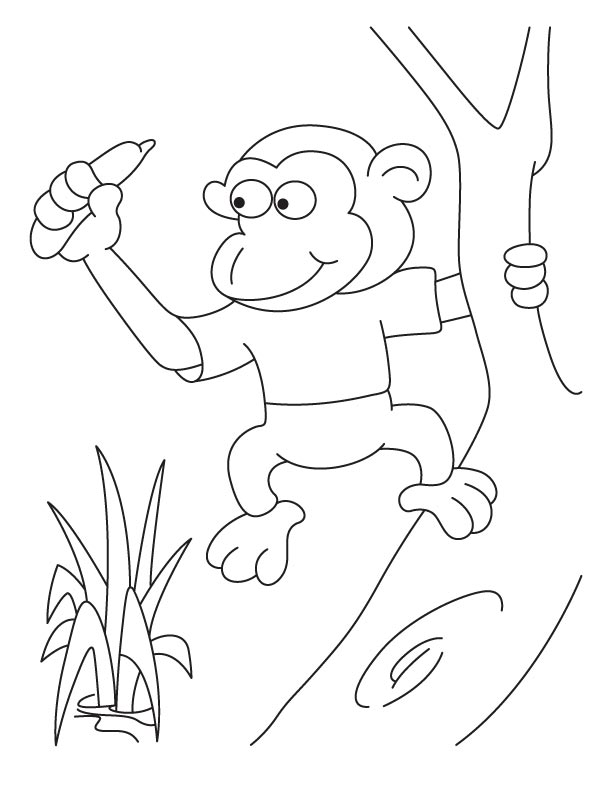 Pigmy Monkey Coloring Pages