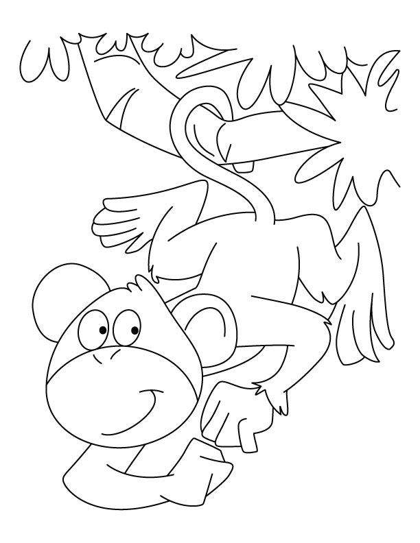 spider monkey coloring pages
