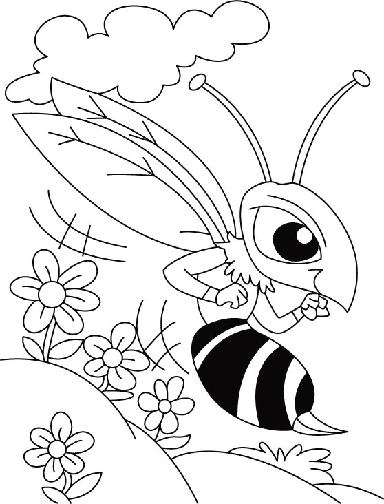 Coloring pages: Coloring pages: Mosquito, printable for kids ... | 732x558
