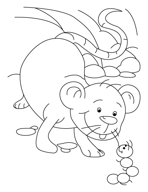 Mouse and ant planning coloring pages