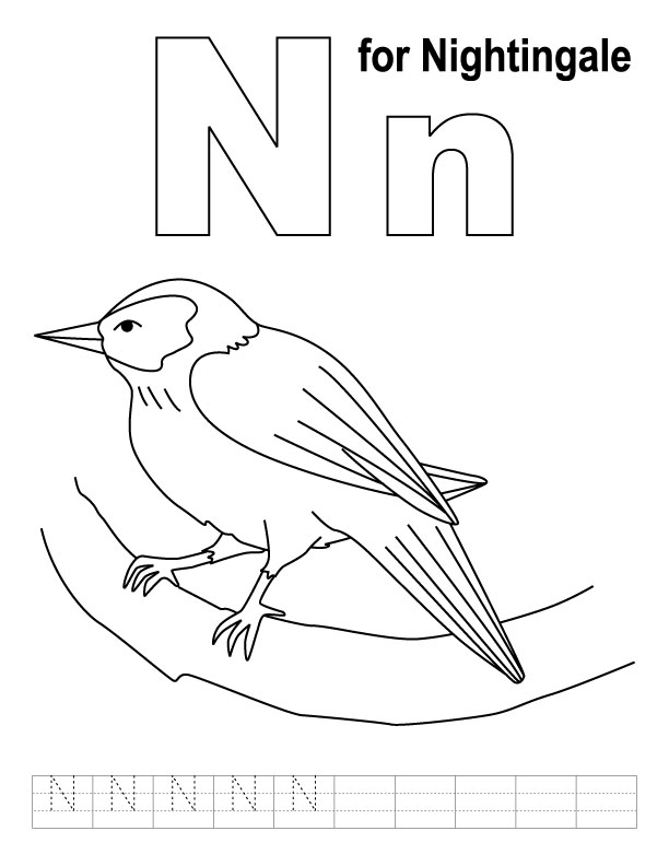 N for nightingale coloring page with handwriting practice
