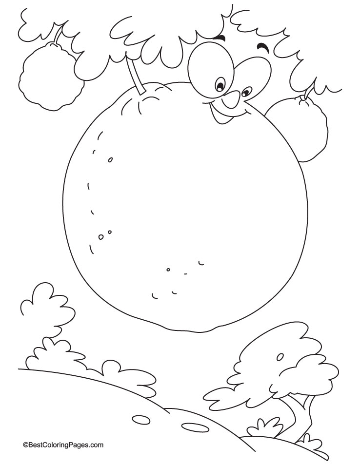Fresh Juicy Ornage On Tree Coloring Page