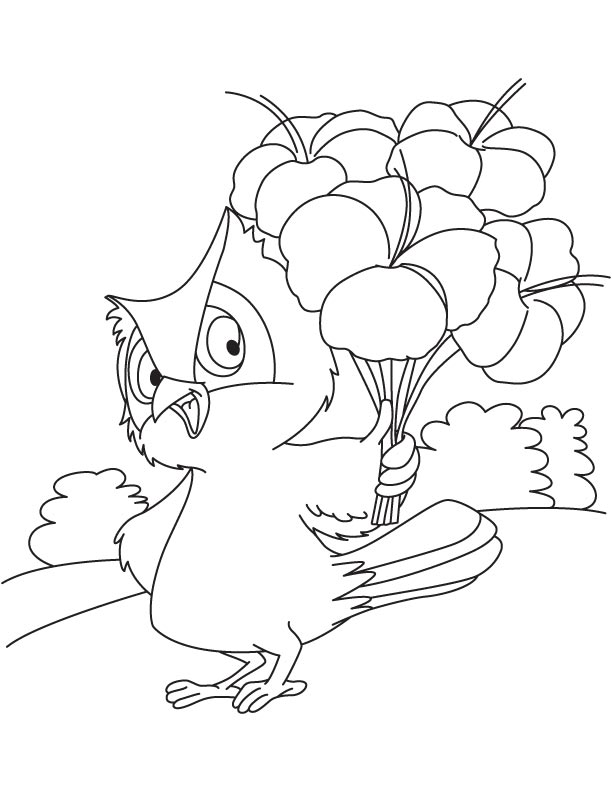 Large Flower Coloring Pages Images About Colouring For