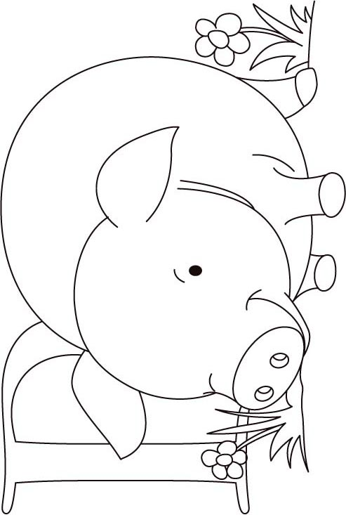 P for pig coloring page for kids