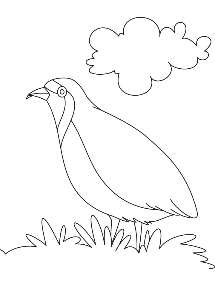 A hungry partridge coloring page