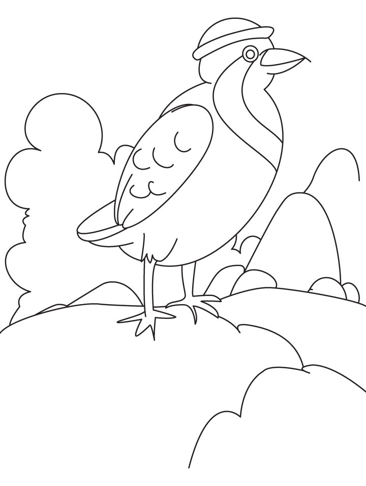 A beautiful partridge sitting on the rock coloring page