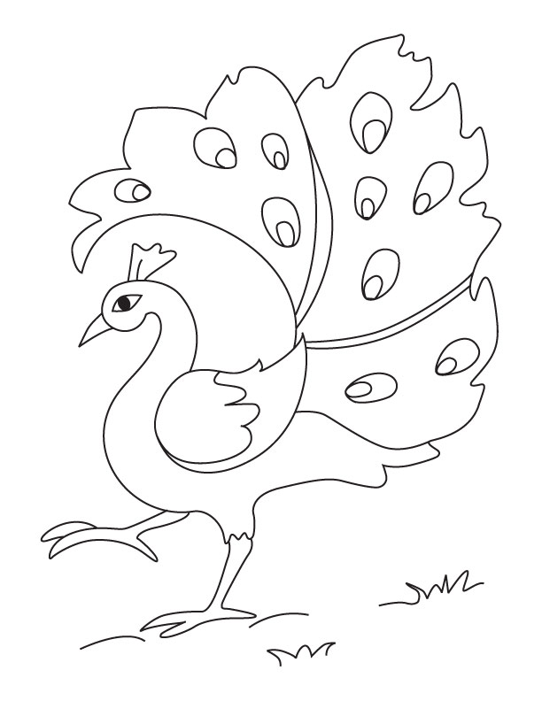 A Dancing Peacock Coloring Page