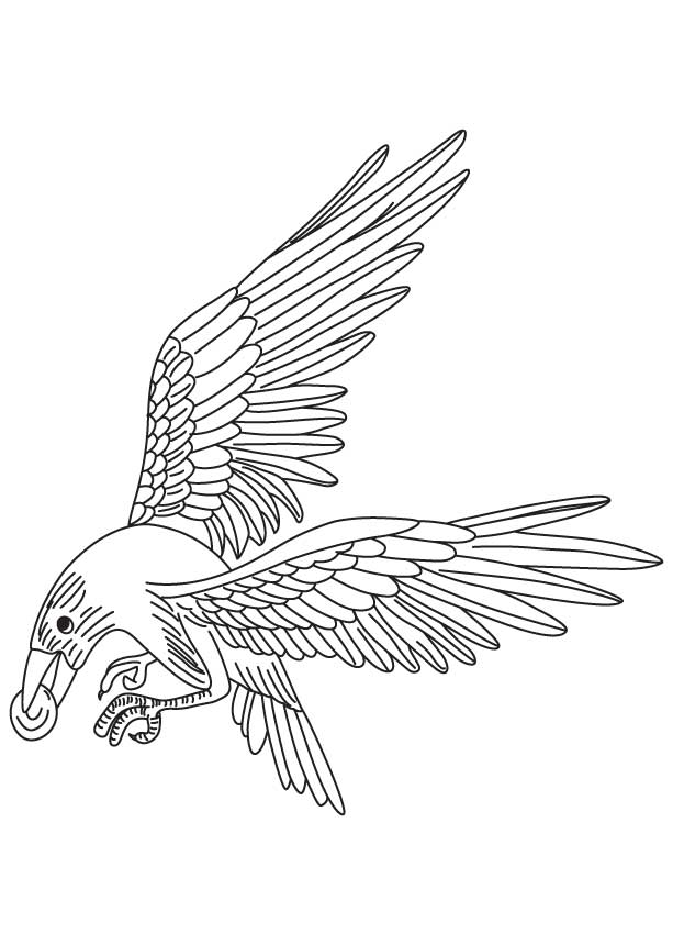 Pebble in the crows beak coloring page