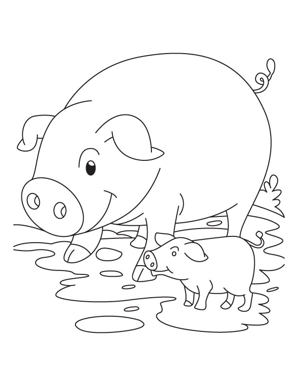 pig and piglet coloring page - Coloring Pages Pigs Piglets