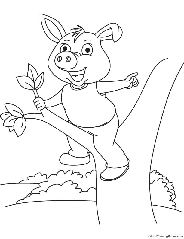 pig on a tree coloring page