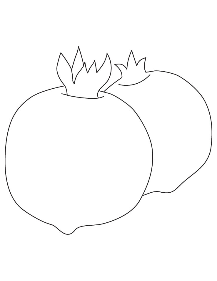 نقاشی سبد سیب The gallery for --> Pomegranate Drawing For Kids