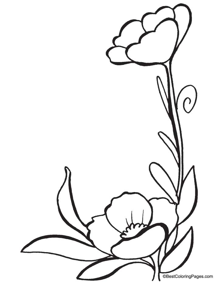 Free Coloring Pages Of Anzac Day Poppies Poppy Colouring Pages