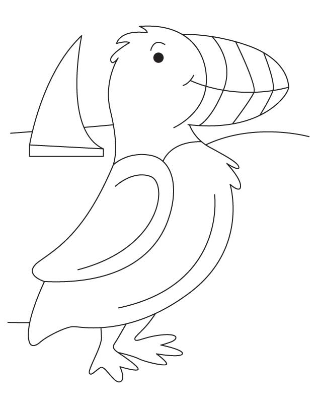 Puffin On Seashore Coloring Page