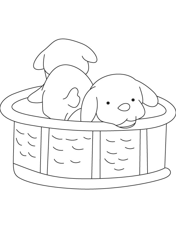 Puppies coloring page