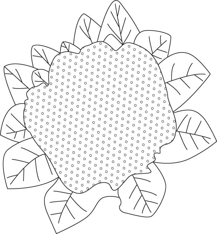 Purple cauliflower coloring page