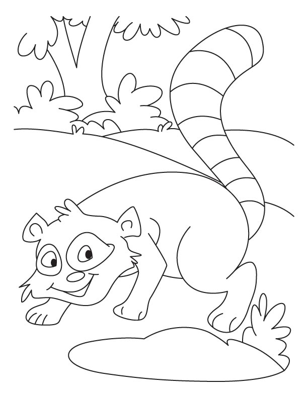 whistling raccoon coloring pages - Racoon Coloring Page