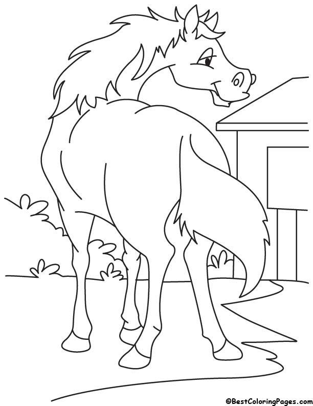 Horse ready to running coloring page