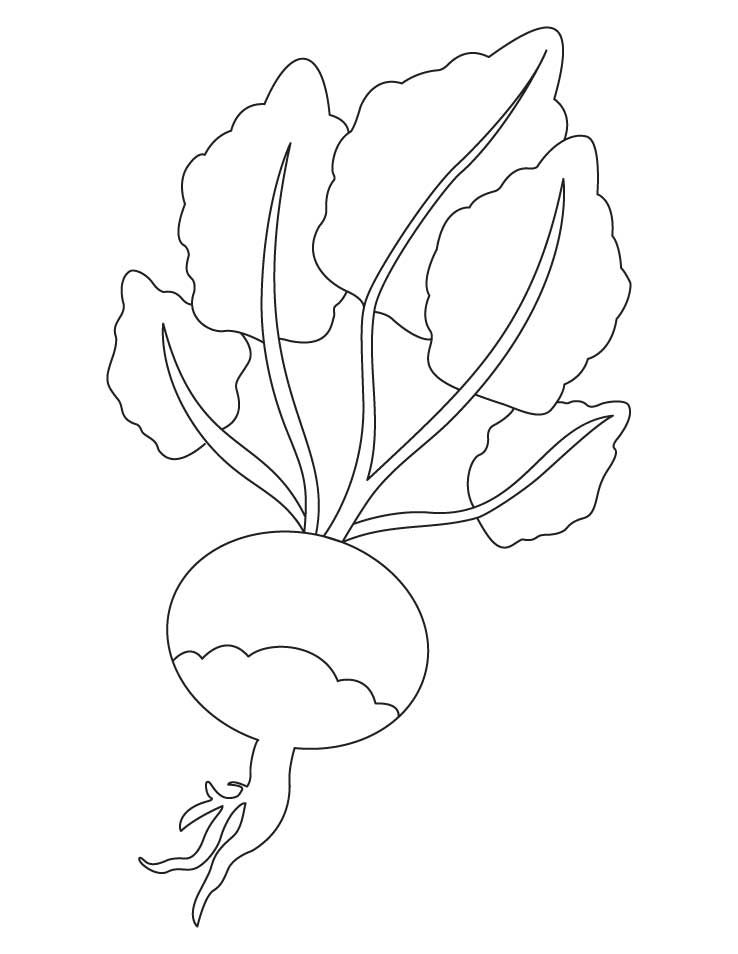 Red turnip coloring page