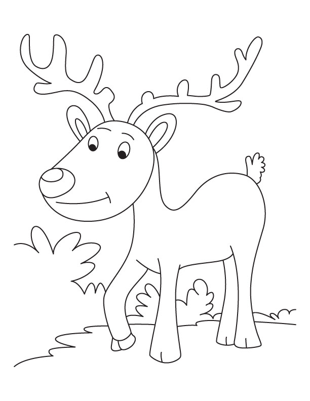 Evening walk reindeer talk coloring pages download free for Reindeer color page