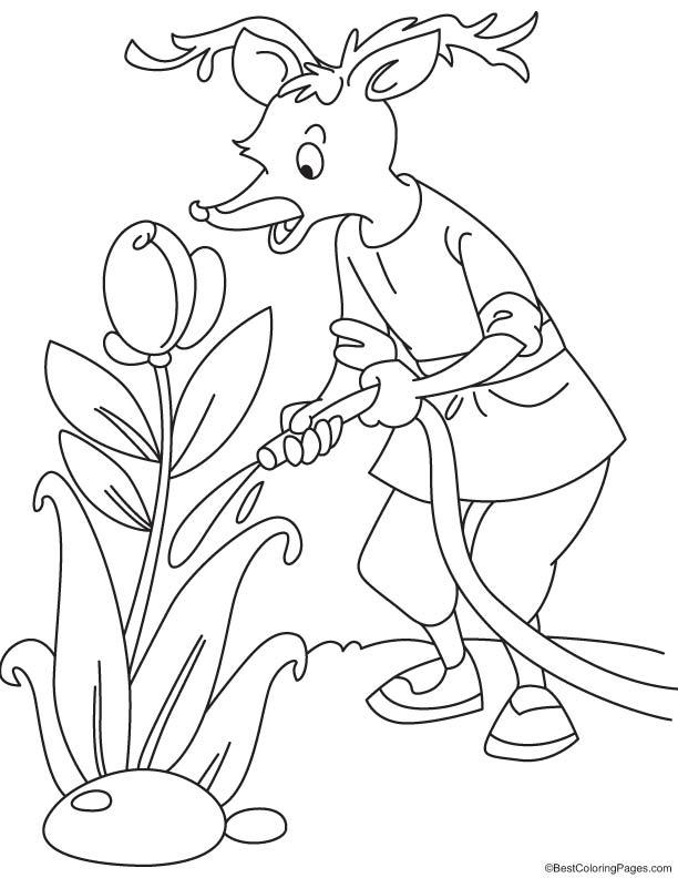 Reindeer watering coloring page