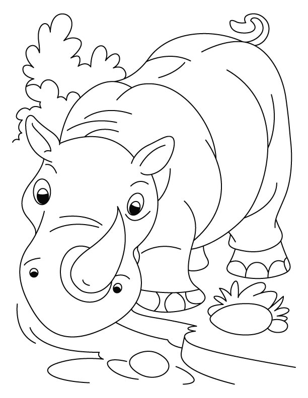 Nose-horned rhinoceros coloring pages
