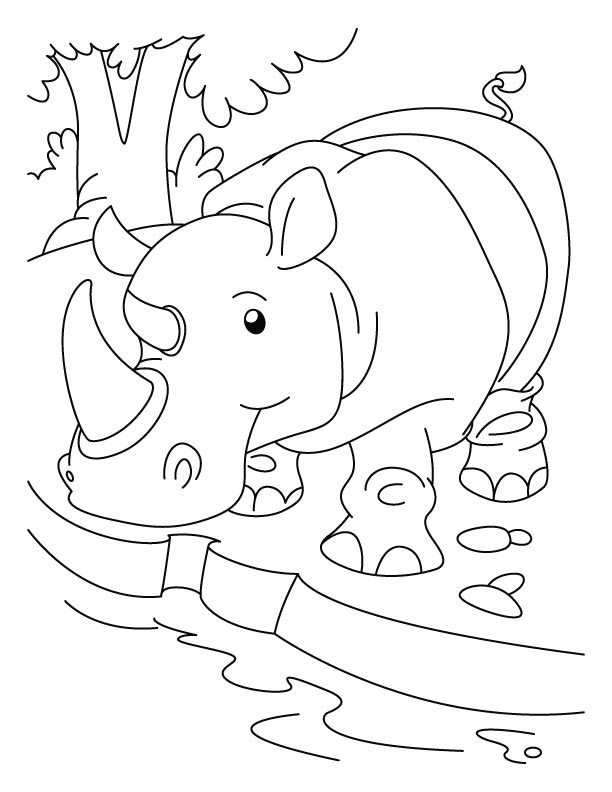 Rhinoceros quenching his thirst coloring pages