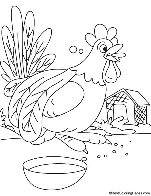 Rooster having food coloring page