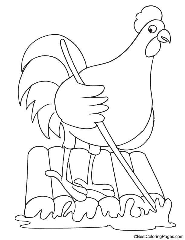 Rooster looking coloring page