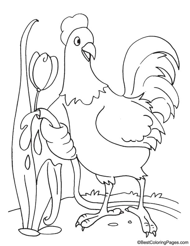 Rooster with tulip coloring page