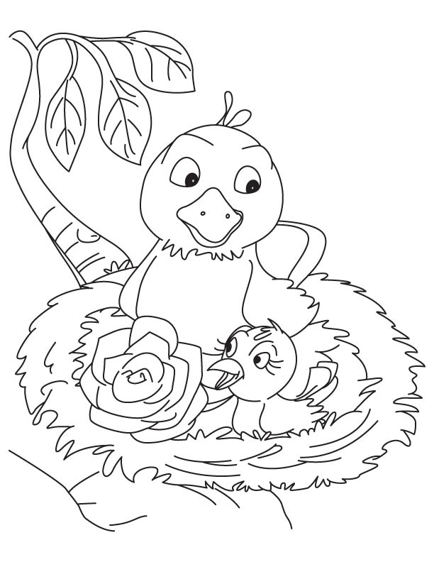Rose in the bird nest coloring page