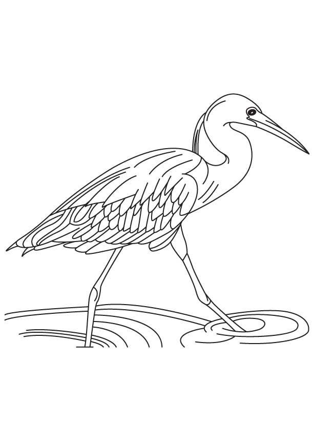 blue heron coloring pages - photo#23