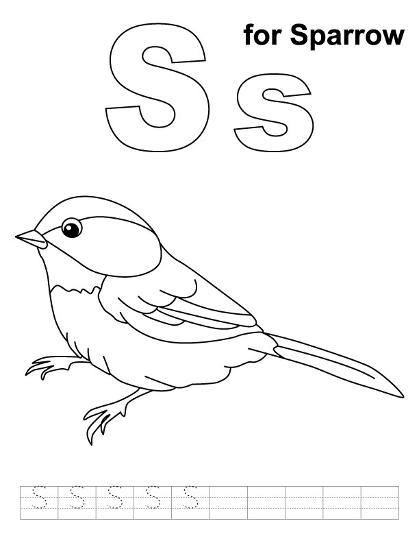 S for sparrow coloring page with handwriting practice