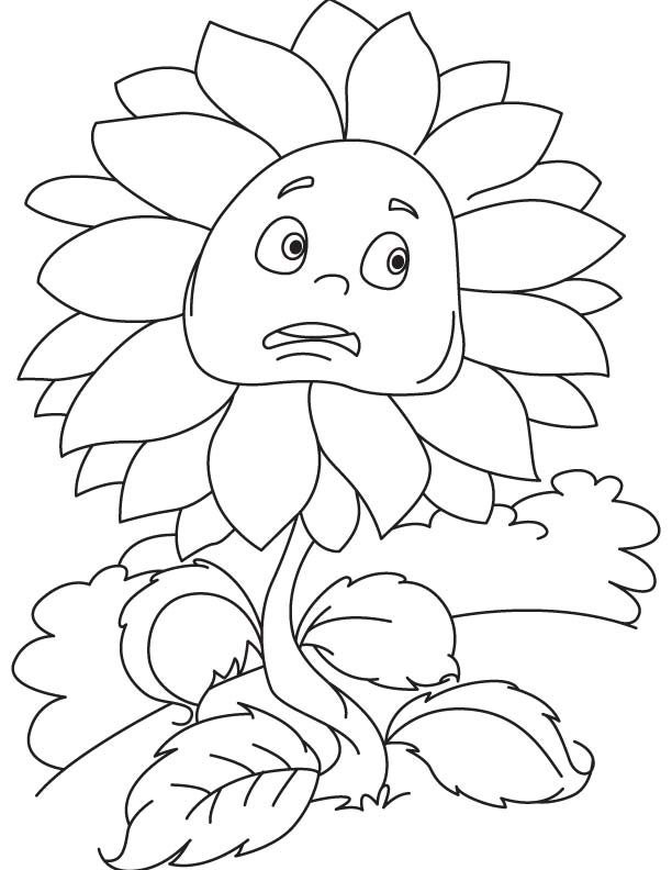 Scared sunflower coloring page