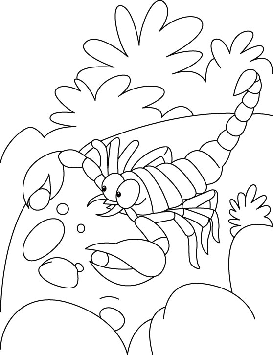 Scorpion Pearl Affection Coloring Pages