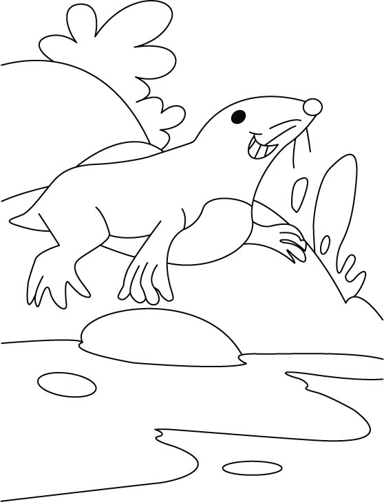 Seal quell thirst coloring pages
