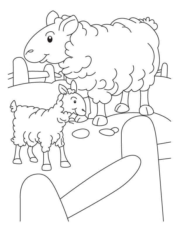 Mother sheep and lamb in a pen coloring page