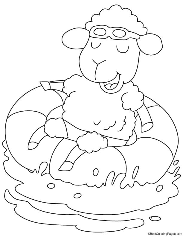 Sheep floating in water coloring page