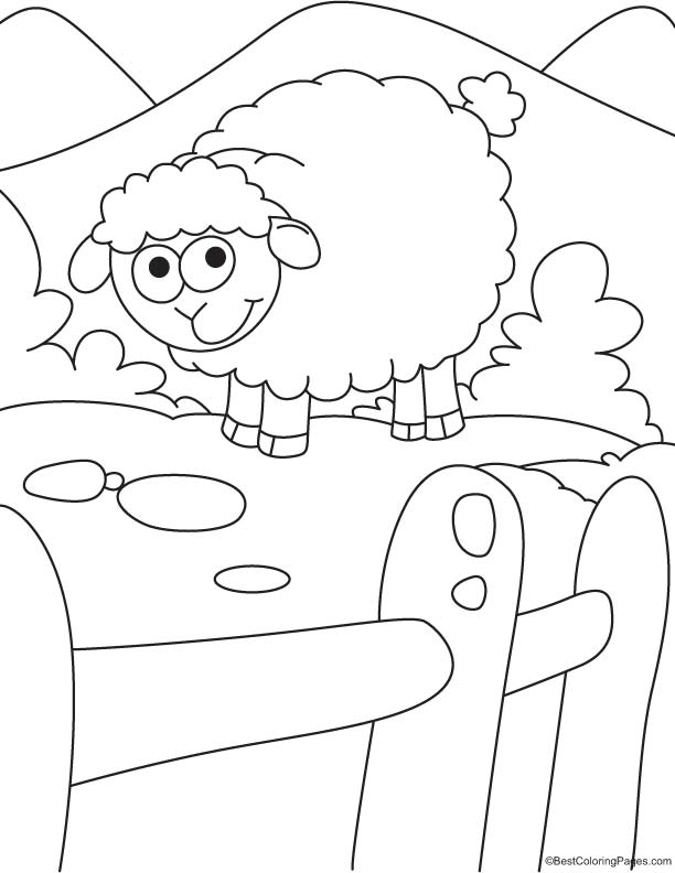 Sheep in mountain coloring page