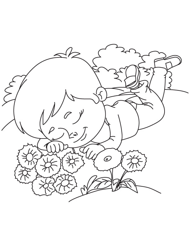 Sleeping beside cornflower coloring page