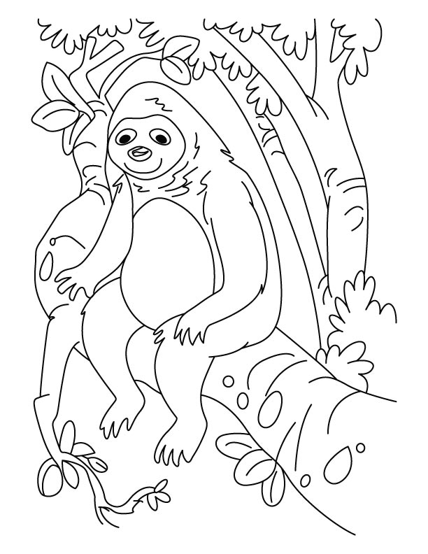 Sloth looking like gorilla coloring pages
