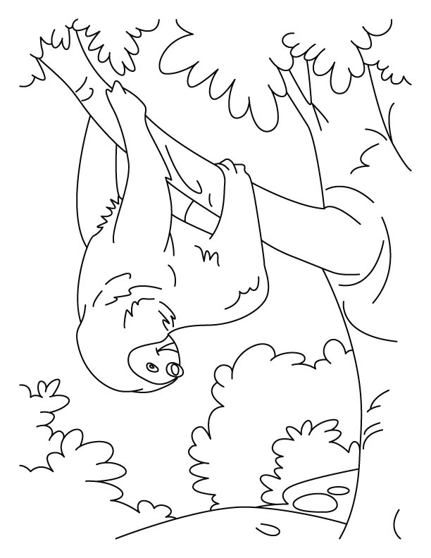 Tumbling sloth coloring pages