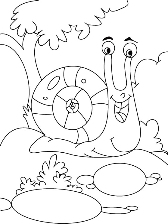 Gleaming snail coloring pages  Download Free Gleaming snail