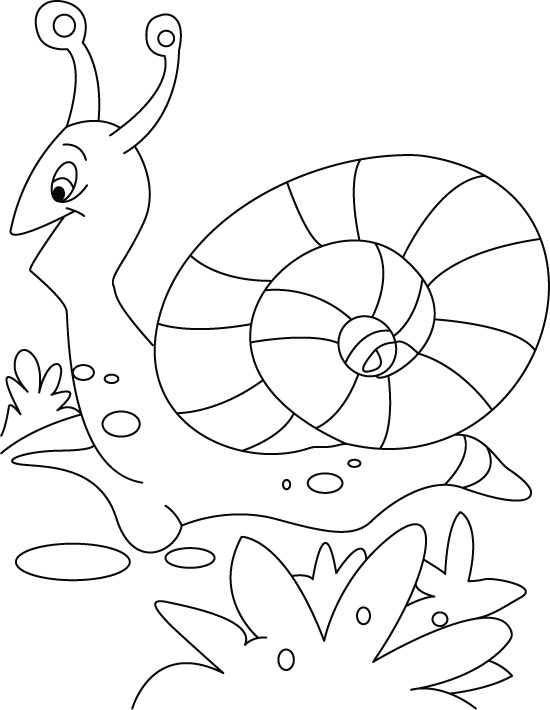 snail leaving for cocktail coloring pages
