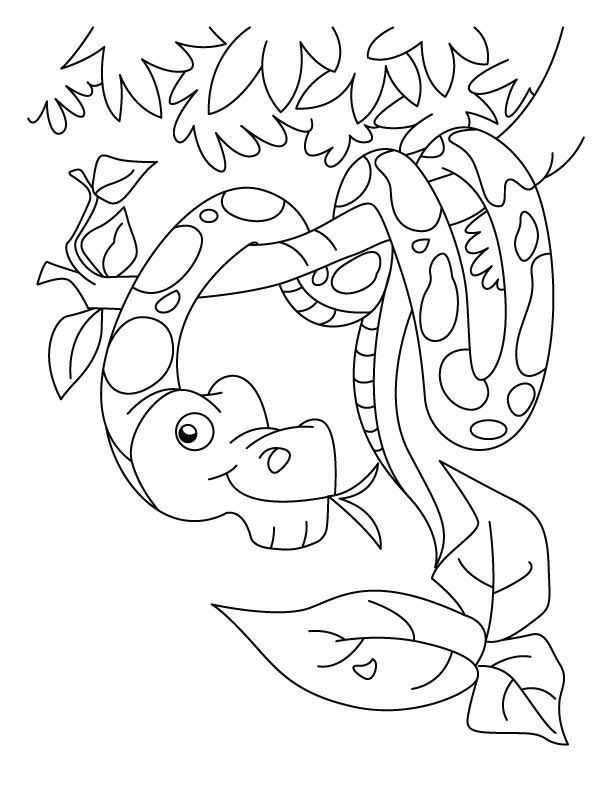 New year snake coloring pages Download Free New year snake
