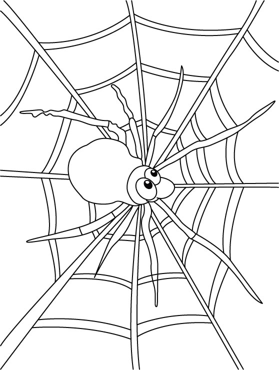 free spider web coloring pages - photo#13