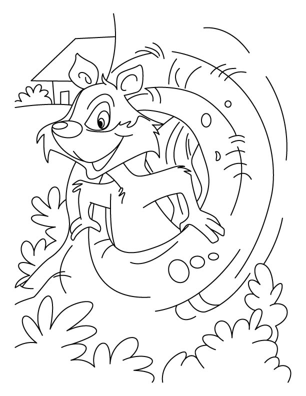 A squirrel in the drey coloring pages