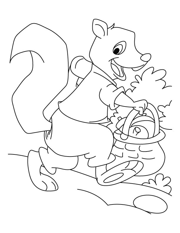 Squirrel shopping grocery coloring pages