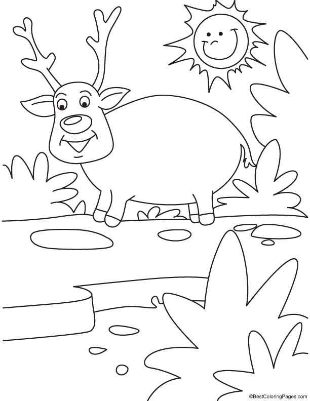 Sun looking at reindeer coloring page