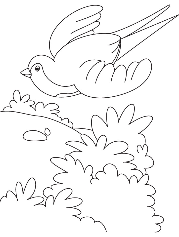 a flying swallow bird coloring page